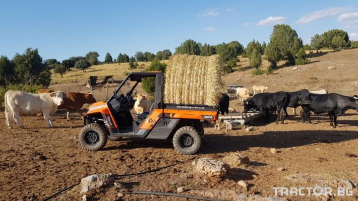 UTV, ATV, сервизни коли UTV CORVUS TERRAIN DX4 CAB 1 - Трактор БГ
